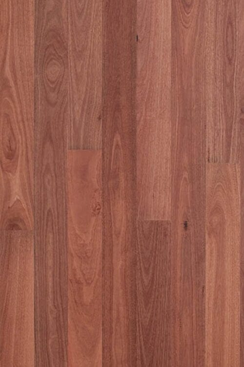 Bluegum-engineered floors-Origins Collection