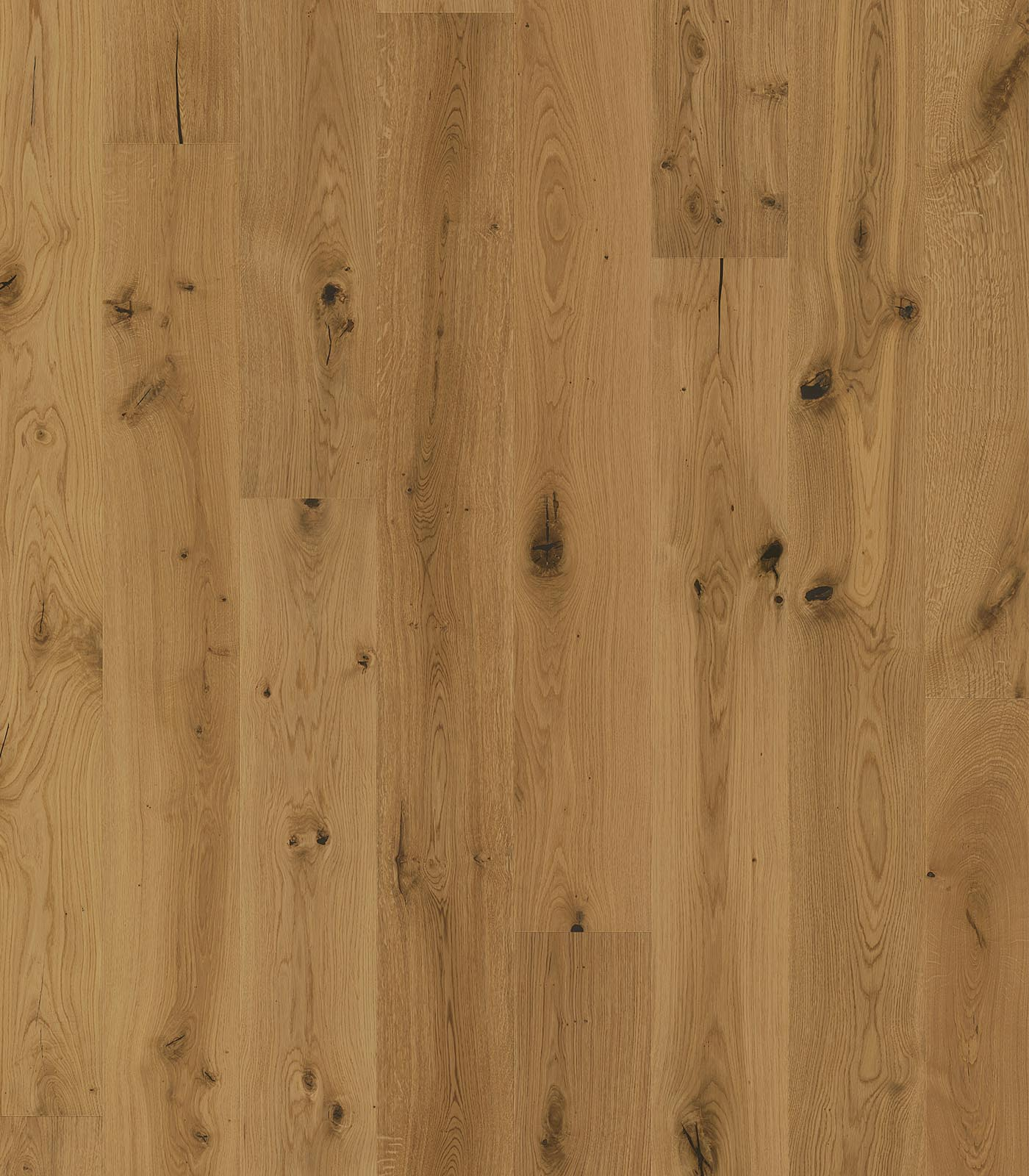 Oak Antique- Antique-grading-of-European-Oak-floors-Forestry-Timber-flat