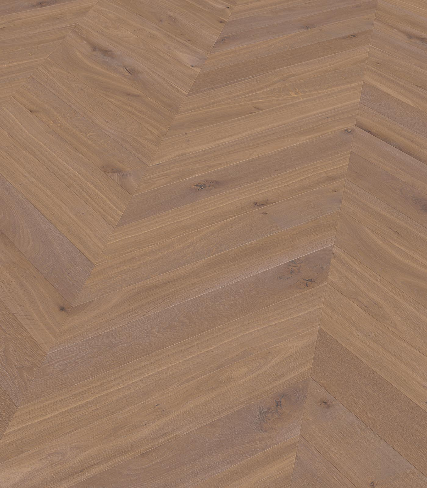 Biarritz-European Chevron Oak floors-Fashion collection-angle