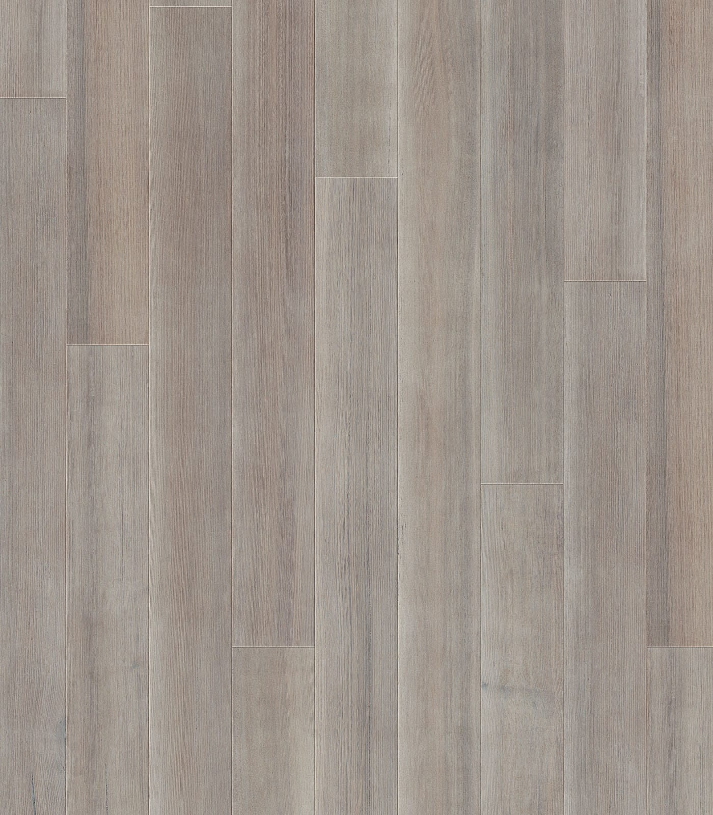 Adelaide-After Oak Collection-Tasmanain Oak floors-flat