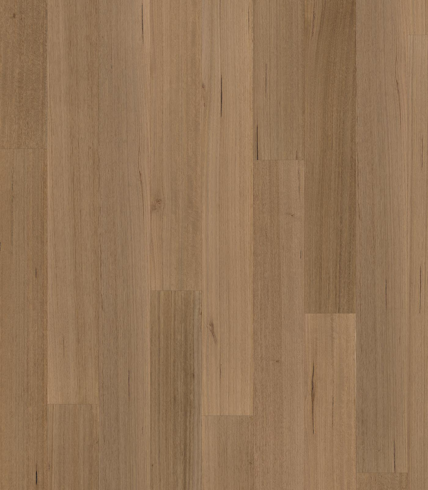 Albany-Tasmanian oak Floors-After Oak Collection-flat
