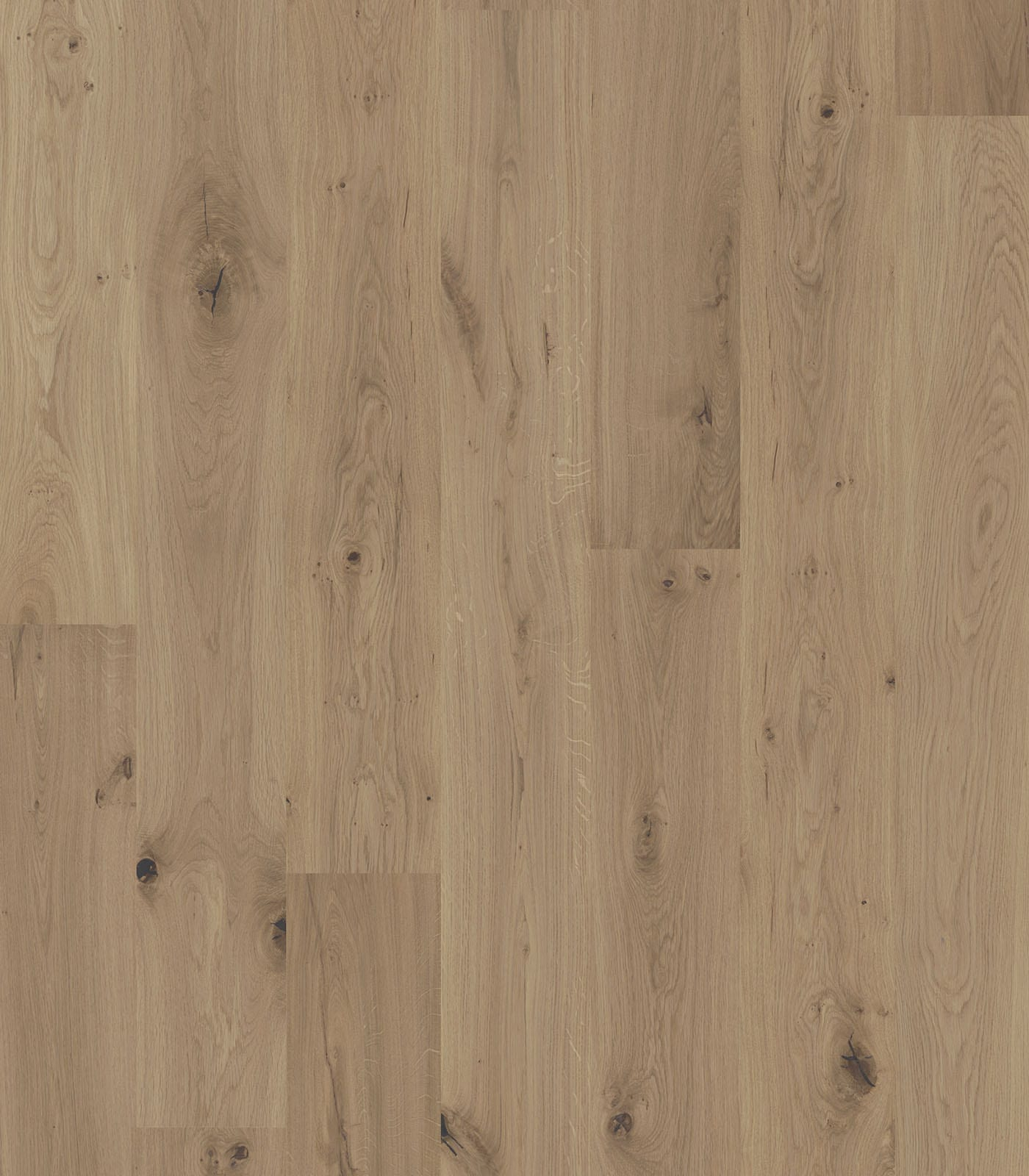 Alpamayo-Antique Collection-European Oak floors-flat