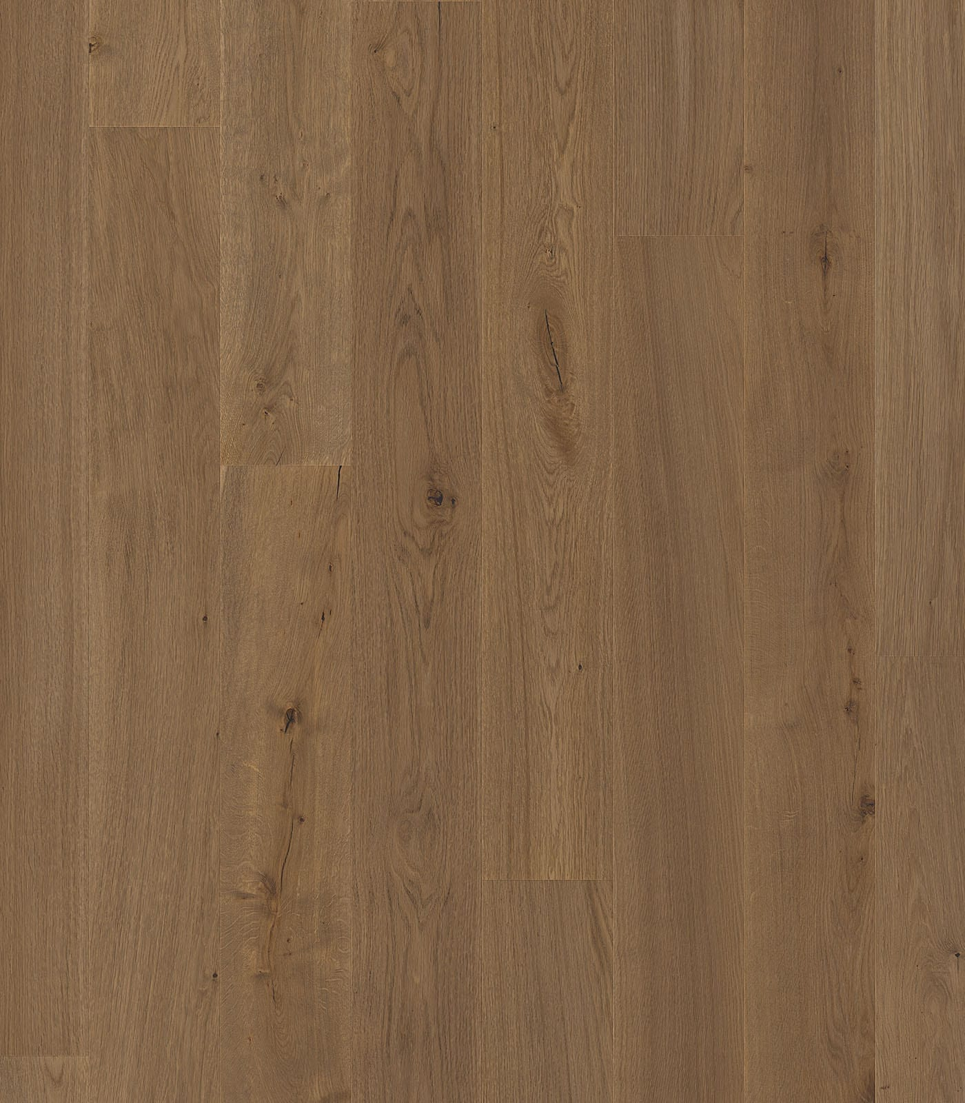 Amboseli-European Oak floors-Lifestyle Collection-flat
