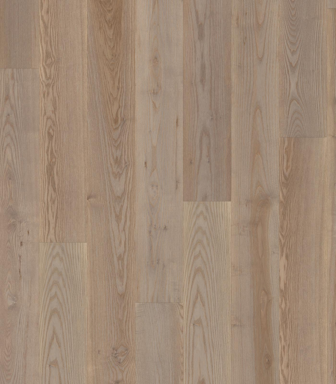 Amsterdam - After Oak Collection - European Ash Floor - Flat
