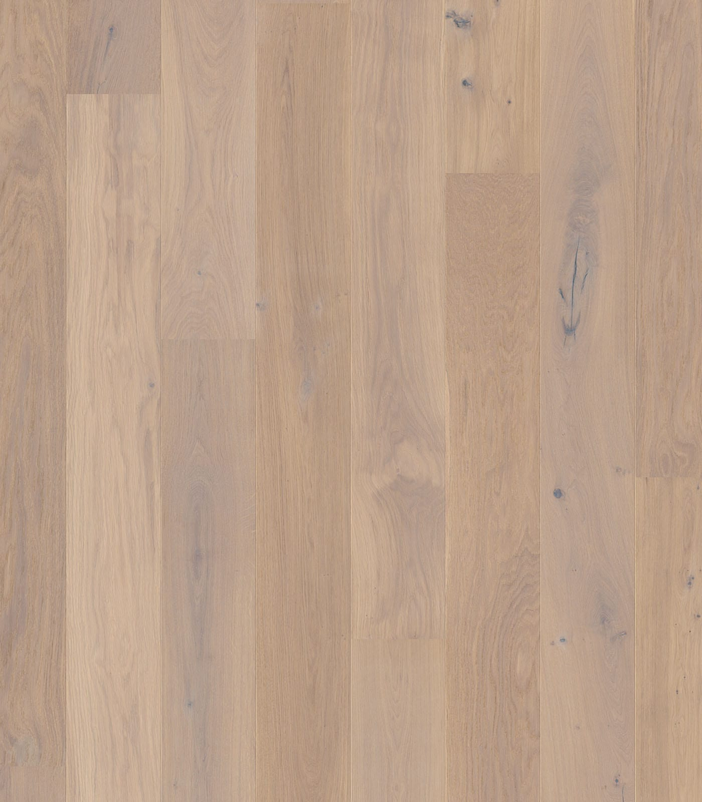 Arctic-Colors Collection-European Oak Floors-flat