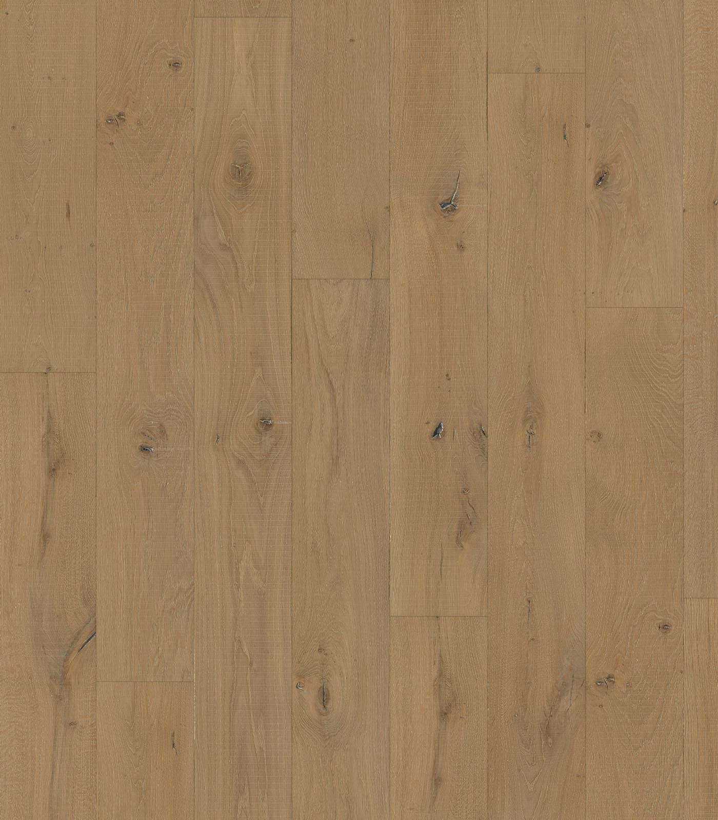 Avignong-Heritage Collection-European Oak floors-flat