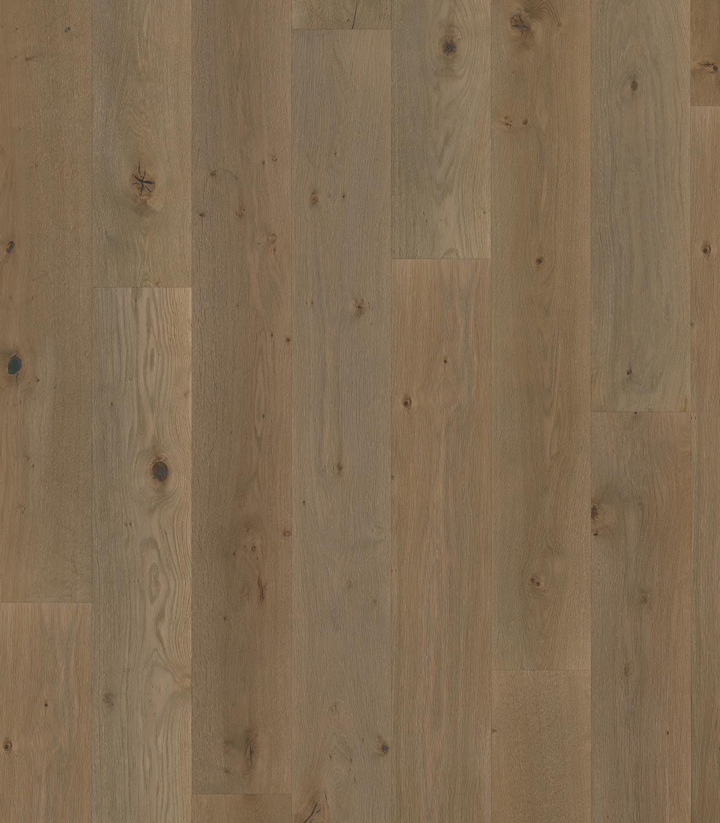 Bequia-Island Collection-European Oak floors-flat