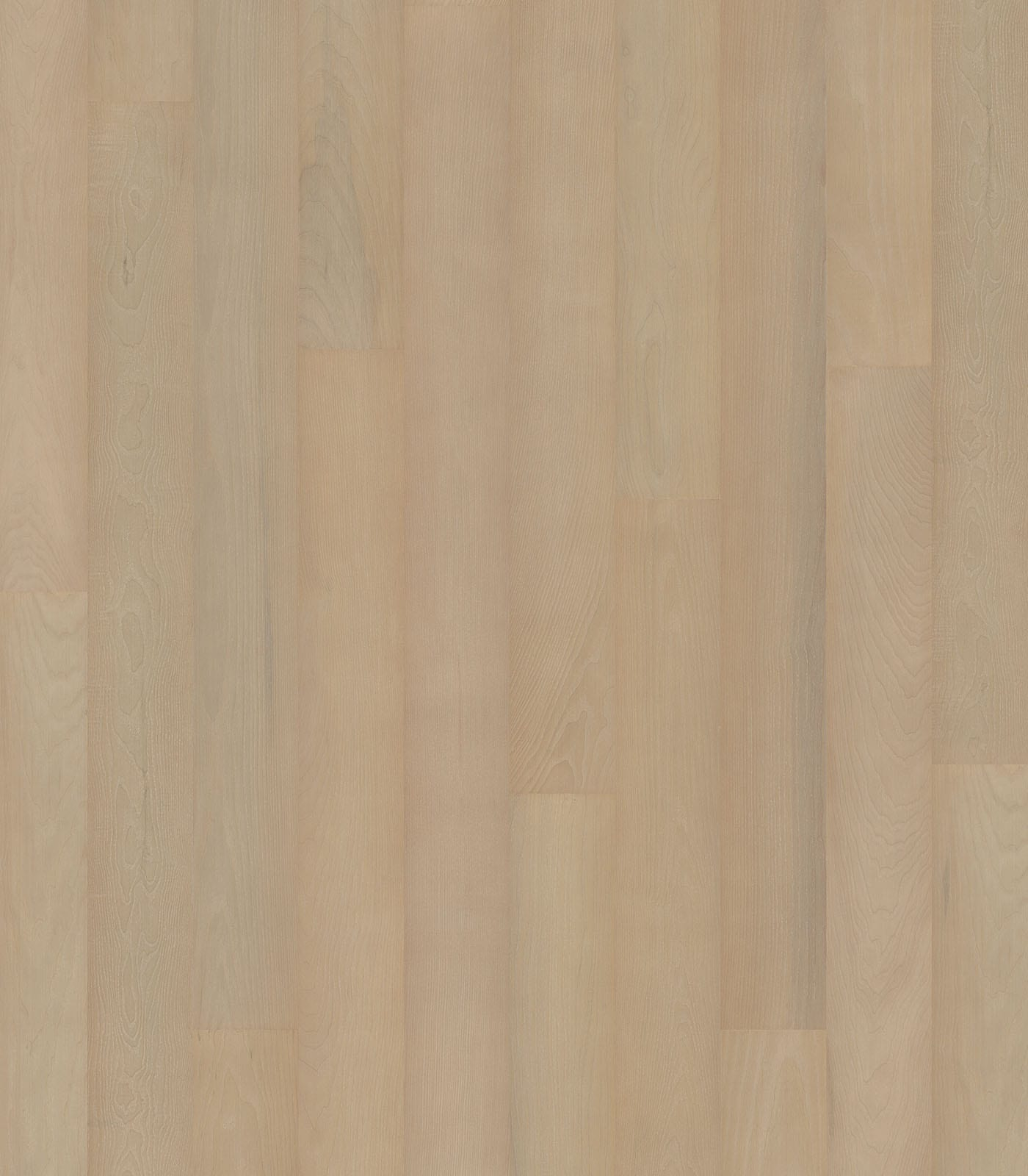 Berlin-European Ash floors-After Oak Collection - flat