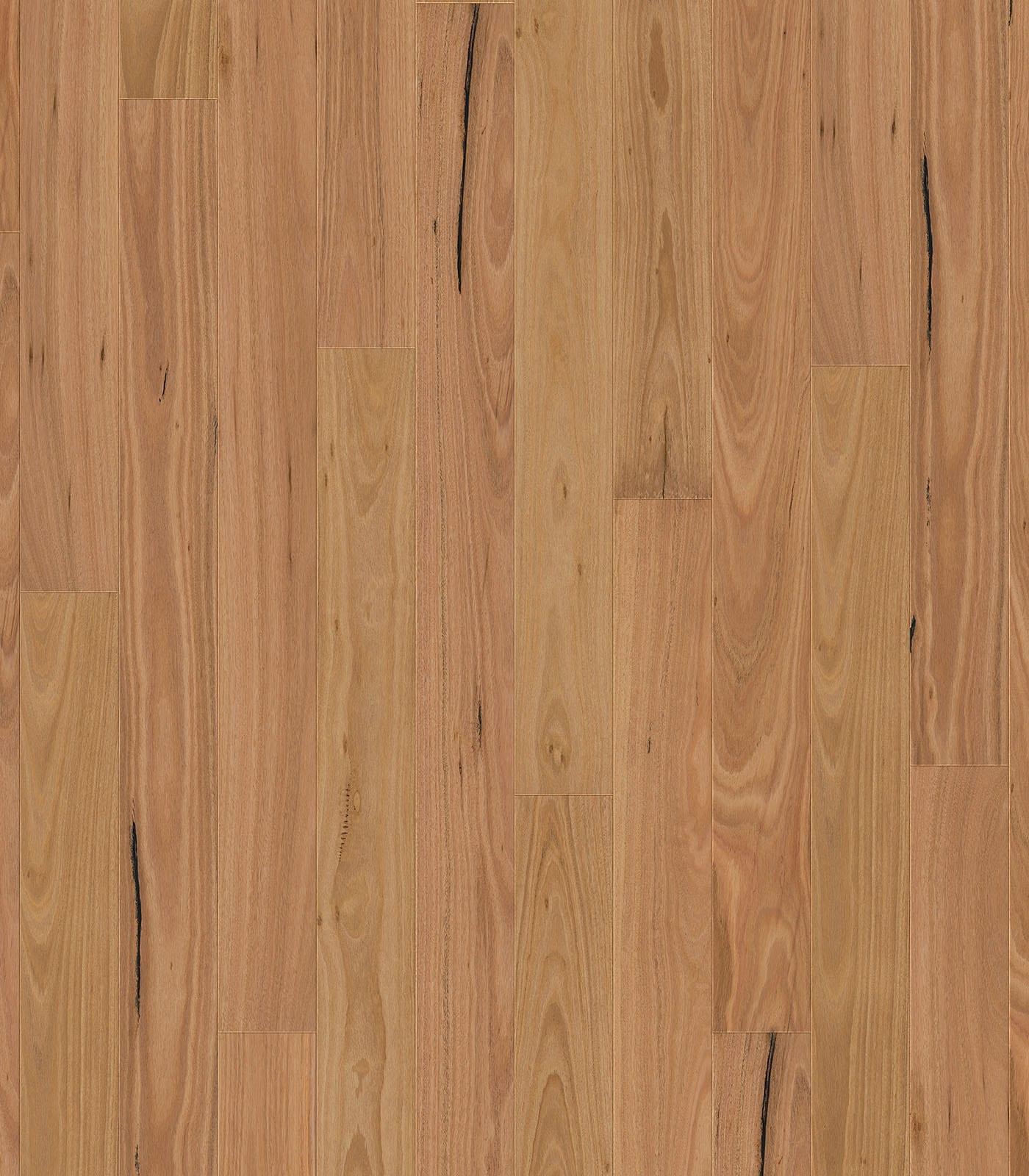 Blackbutt-engineered flooring-flat