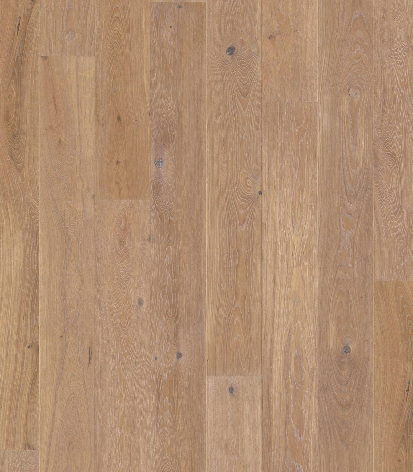 Brody-Colors Collection-European Oak floors-flat