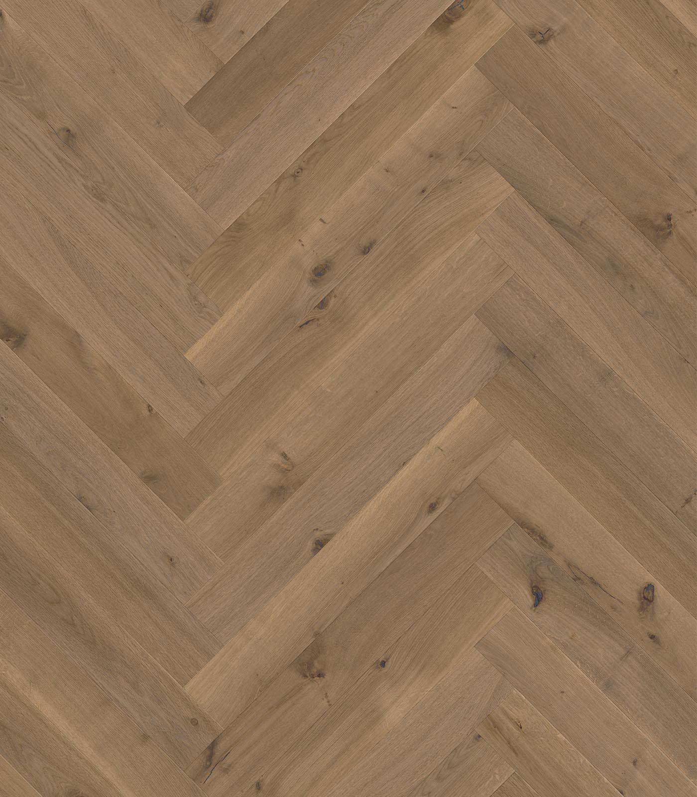 Cairns-Fashion Collection-European Herringbone Oak floors-flat