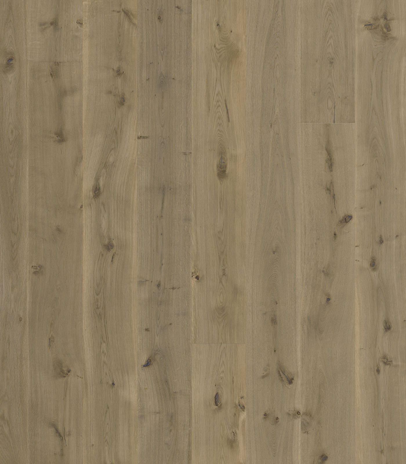 Cairns-Engineered European Oak floors-Lifestyle collection