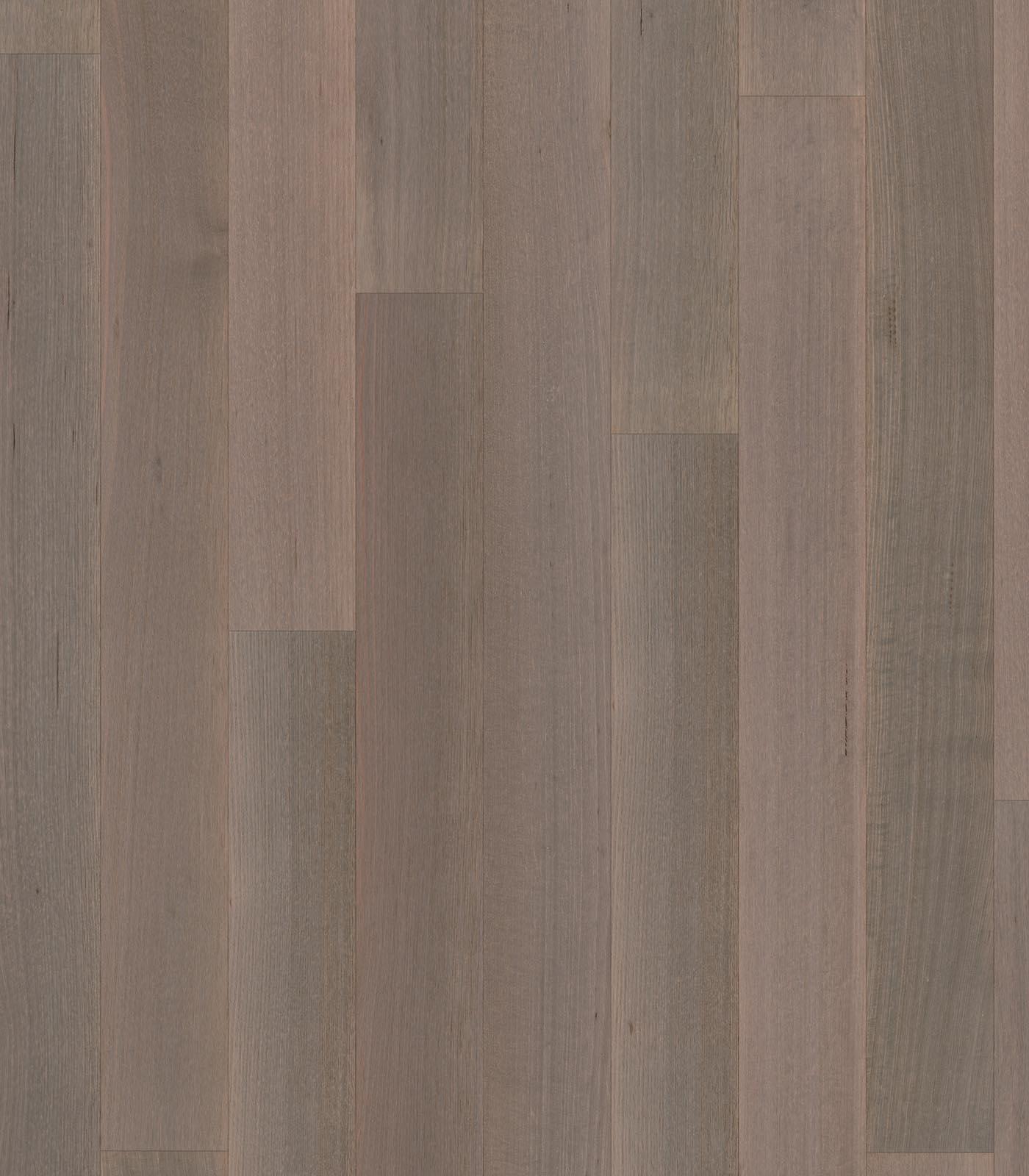 Coffs Harbour-Tasmanian Oak floors-After Oak Collection-flat