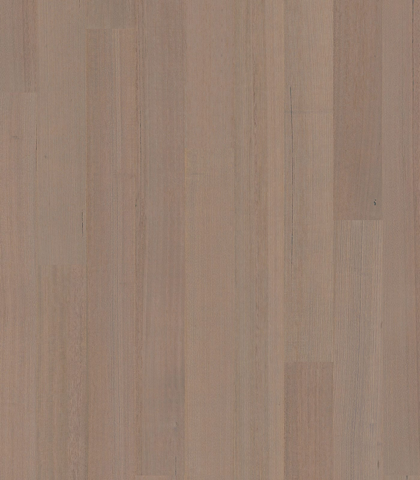 Esperance-Tasmanian Oak floors-After Oak collection-flat