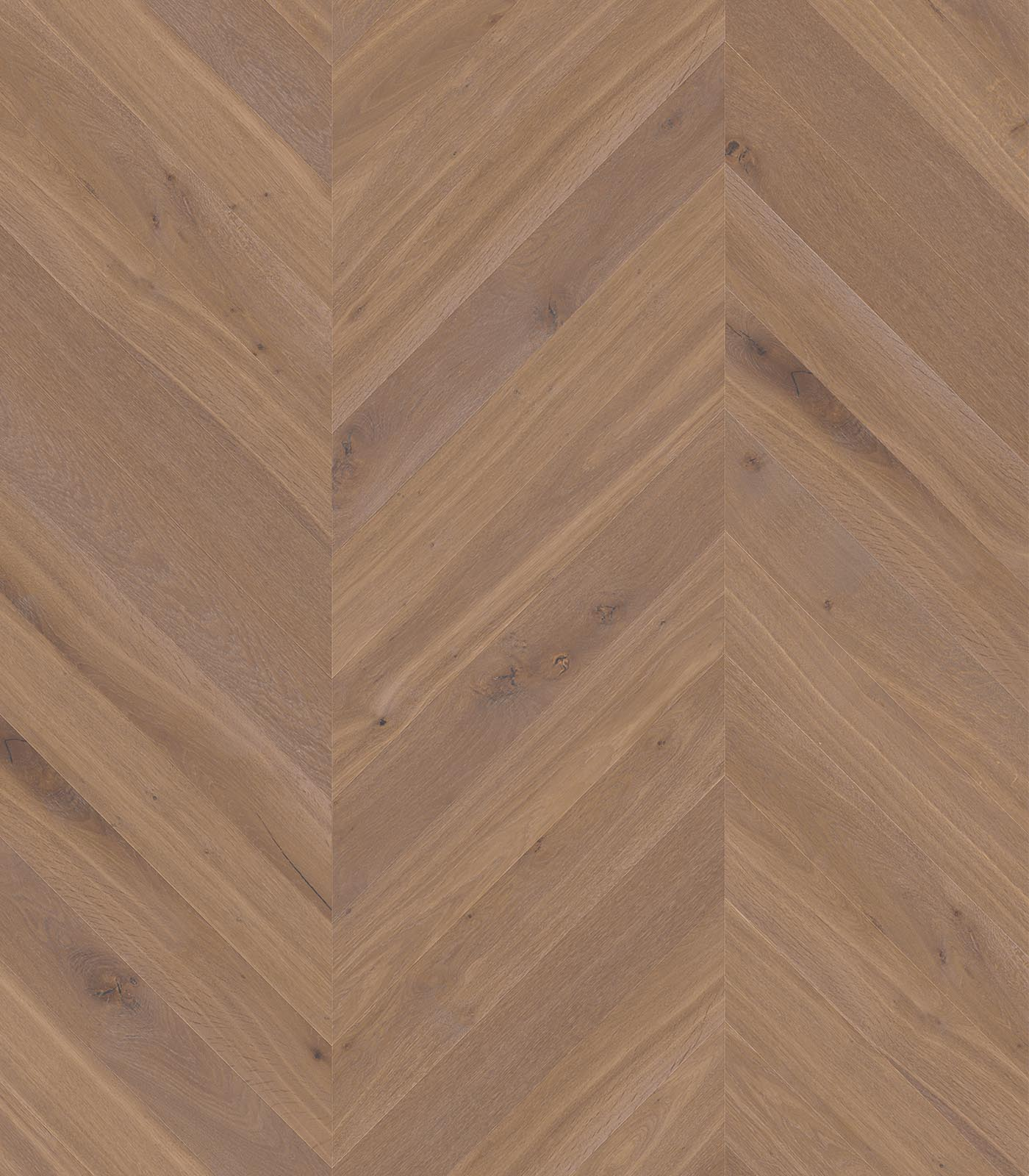 Bairritz-European Chevron Oak floors-Fashion collection-flat