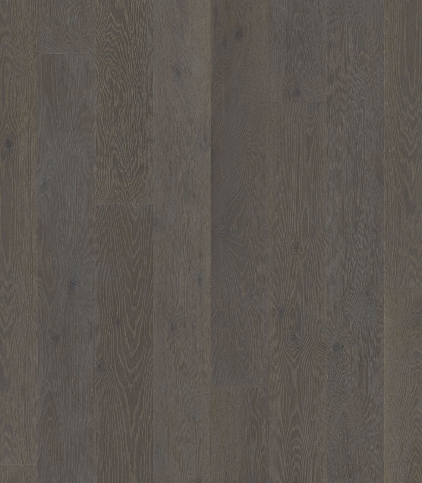 Grey Stone-Colors Collection-European Oak Floors-flat