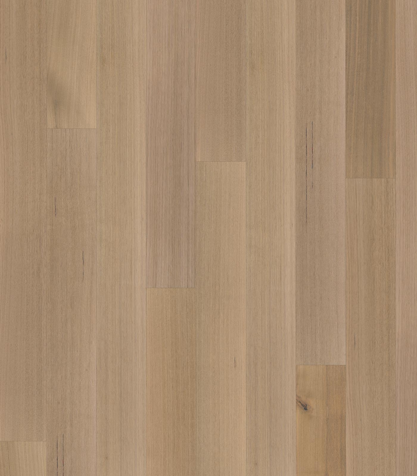 Mackay-After Oak Collection-Tasmanian Oak floors-flat
