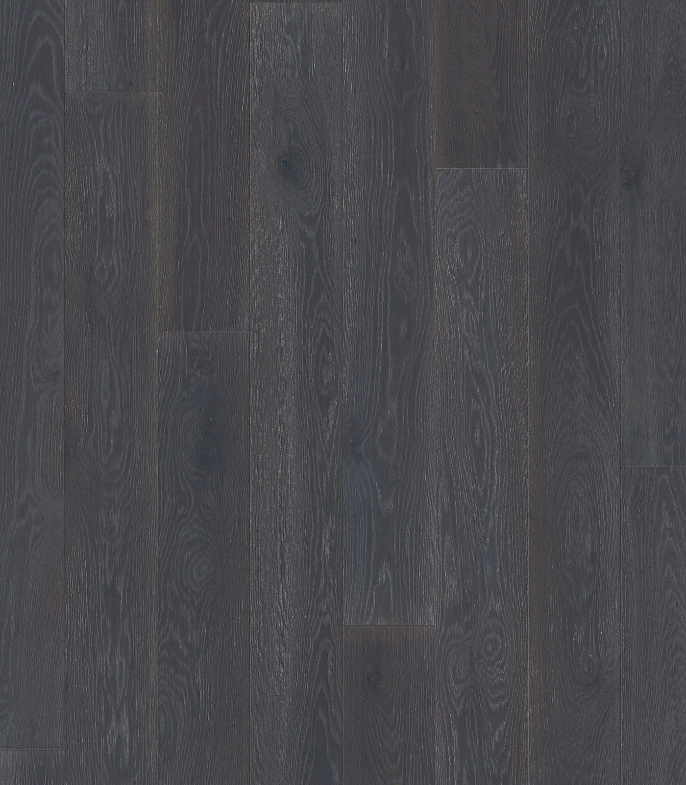 Obsidian-Floors European Oak-Colors Collection