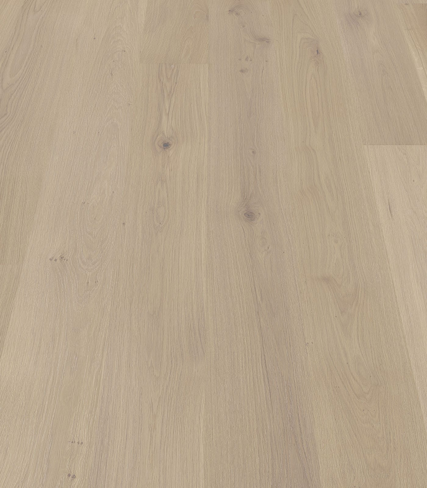 Paramount-Colors collection-European Oak Floors-angle