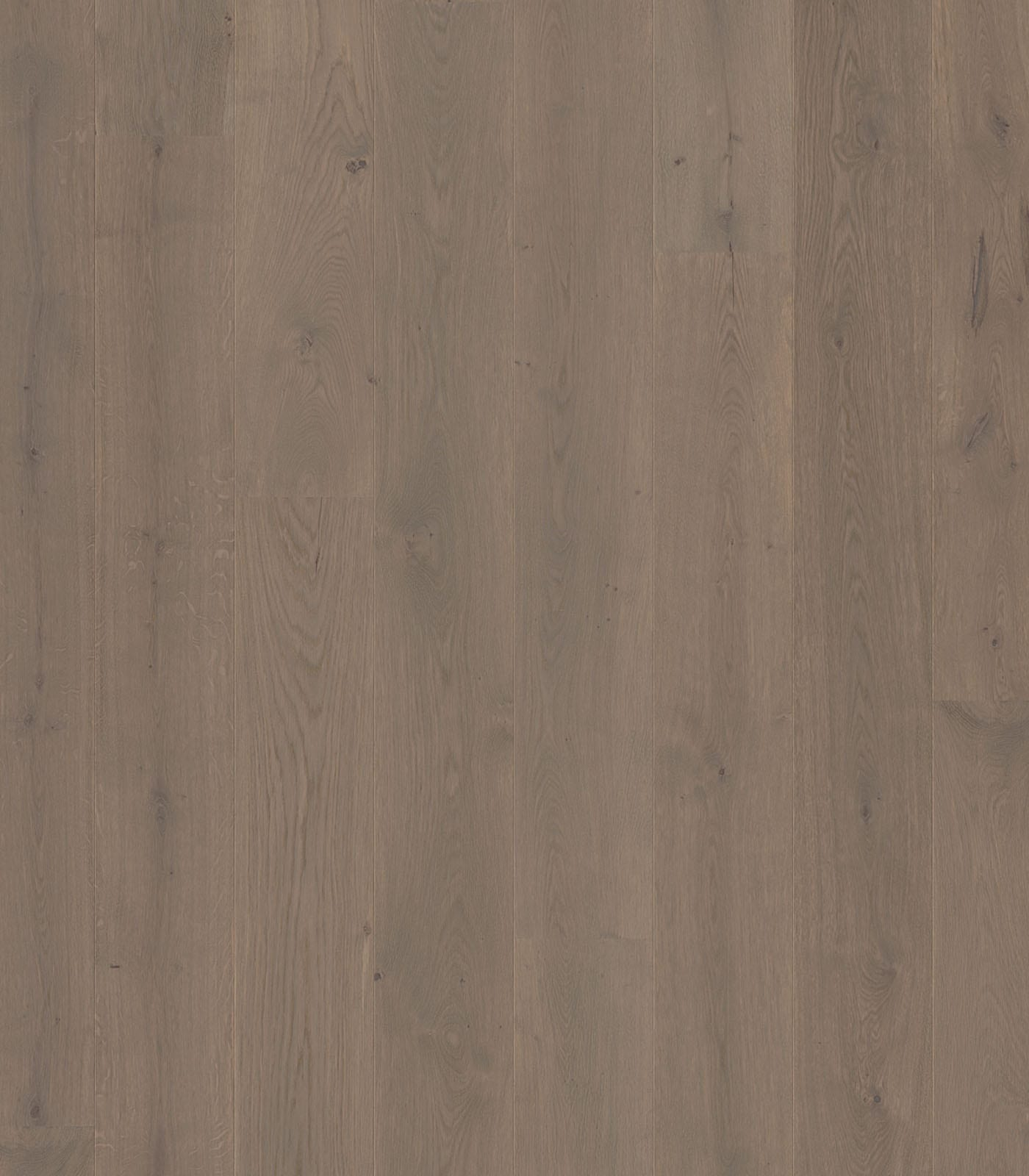 Pearl Grey-Floors European Oak-Colors Collection