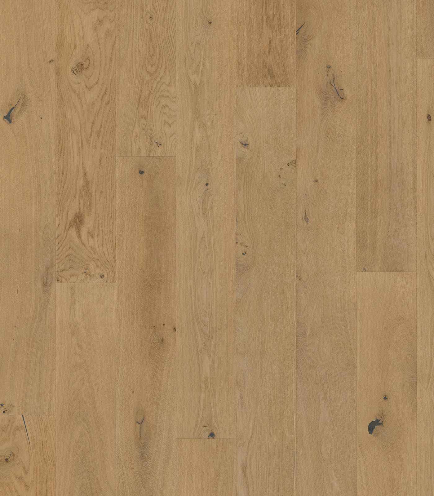Neutrino-Origins Collection-European Oak Floors-flat
