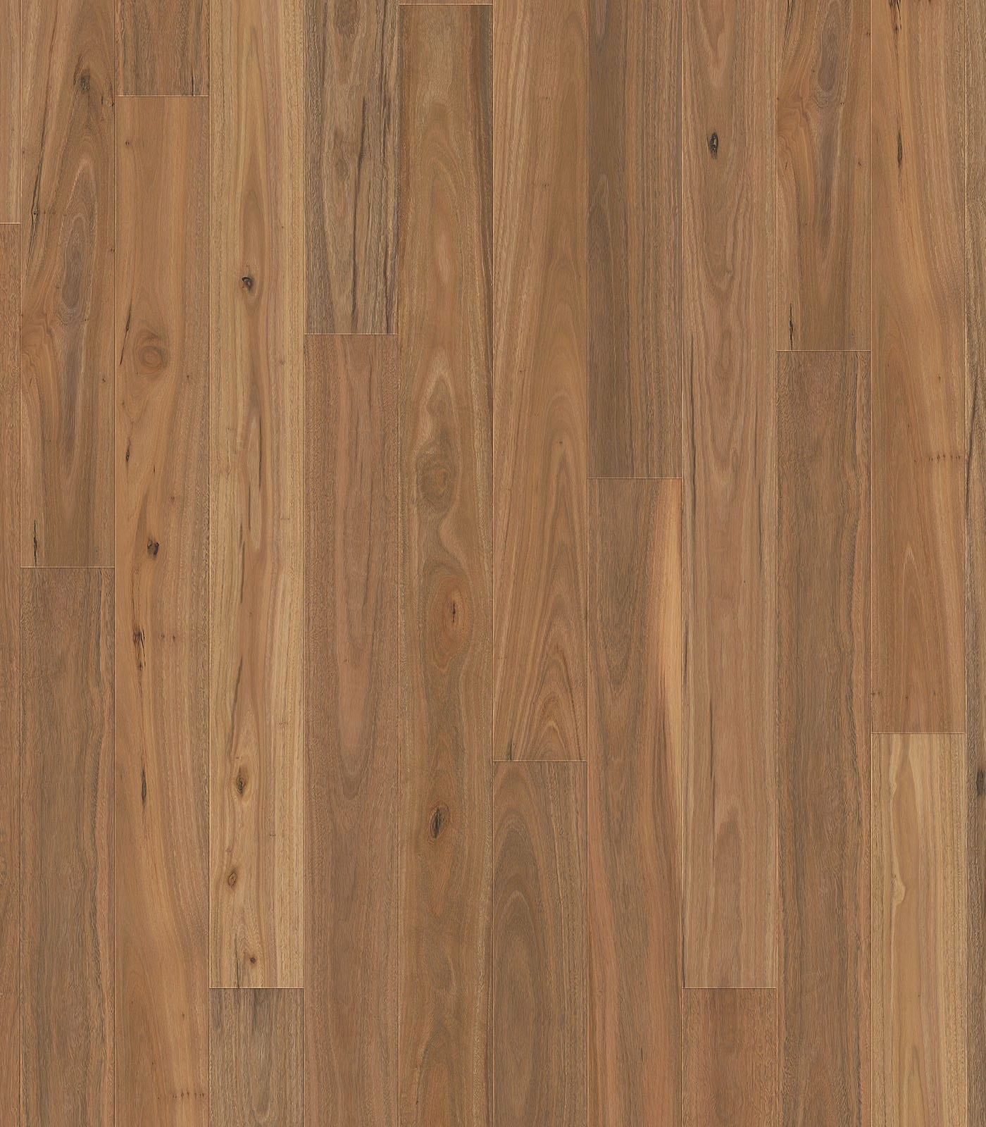 Spotted Gum-engineered floors-Origins collection-flat
