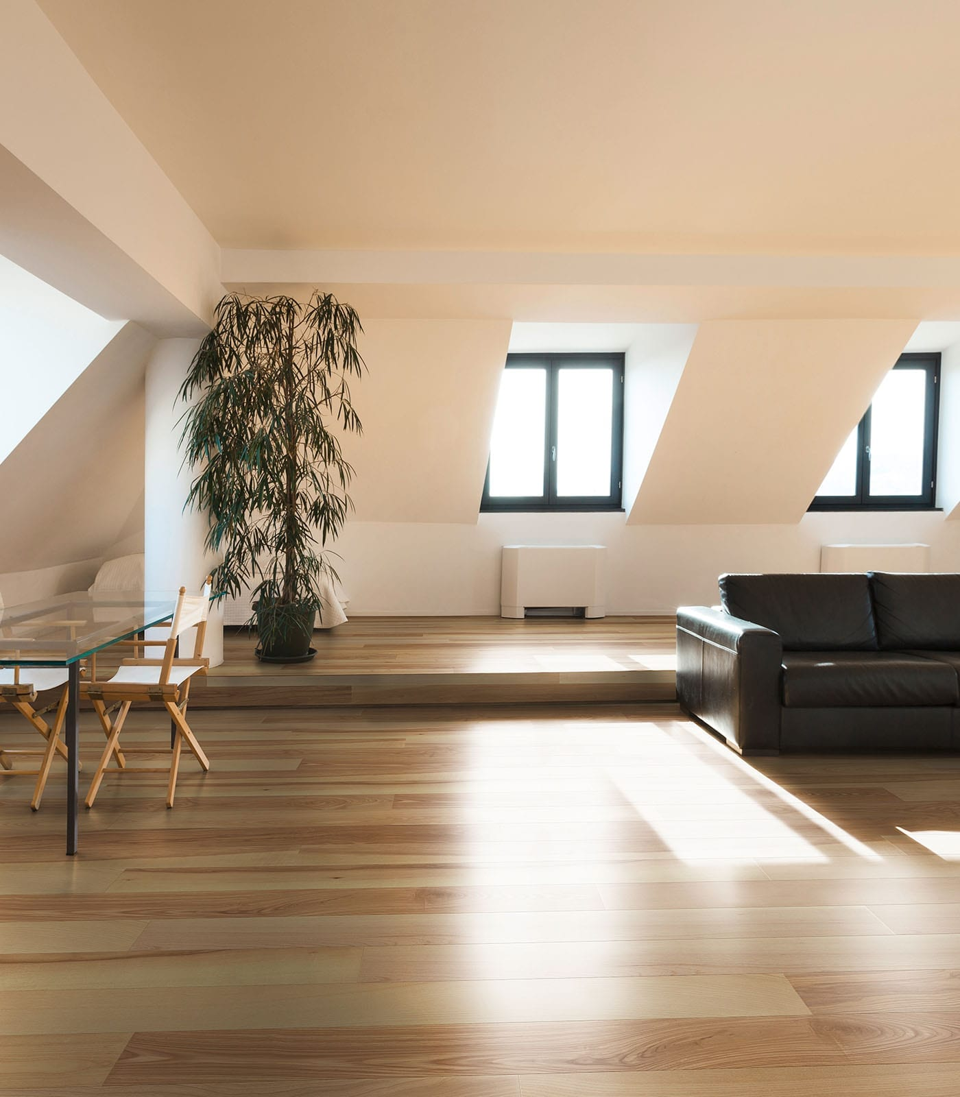 Vienna-European Ash floors-After oak Collection - Room