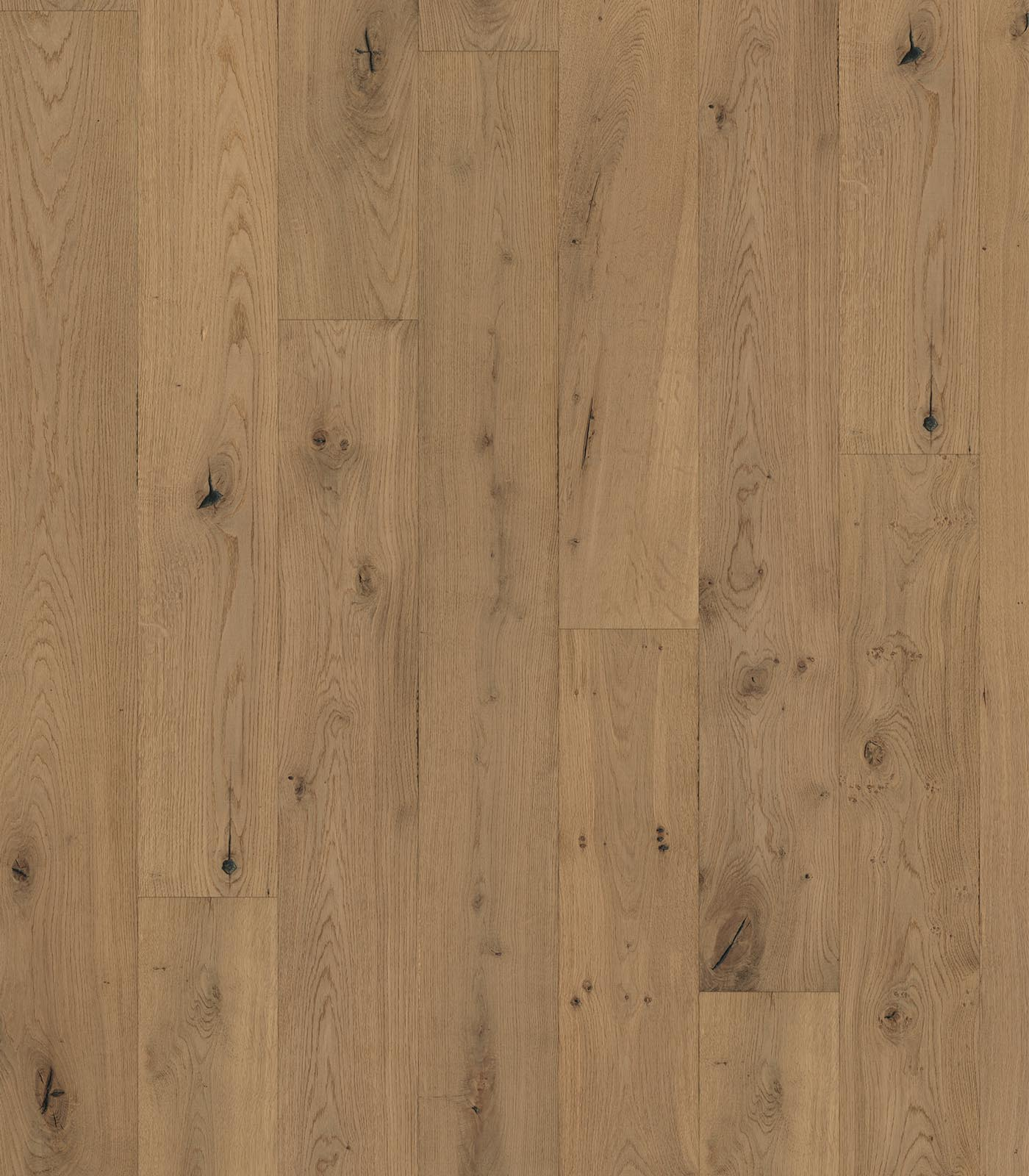 Westminster-European Oak Floors-Heritage Collection-flat