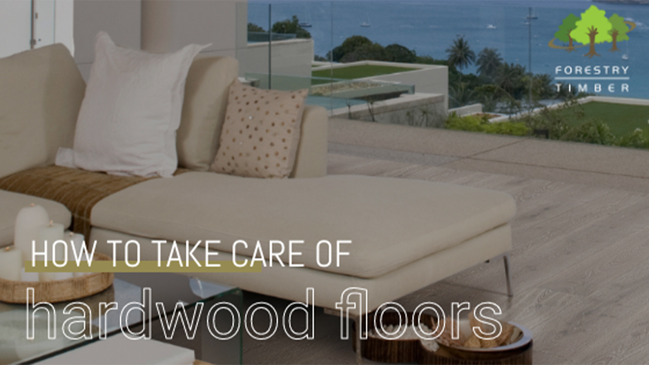 How to take care of Hardwood Floors. Couch and glass coffee table on a hardwood floor beside a window overlooking the ocean